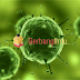 Sejarah Penemuan Virus Lengkap