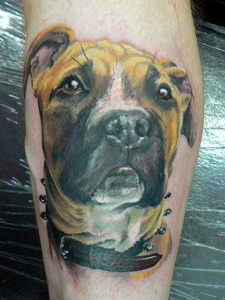 The Best Dog Tattoos (Gallery 4)
