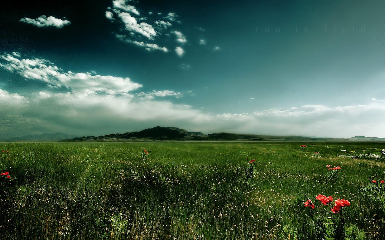 http://1.bp.blogspot.com/-XLRxw9tUDqY/T0d5uaqCQsI/AAAAAAAAH6Y/CEk_ZV3Q3Gw/s1600/best-hd-wallpapers.jpg