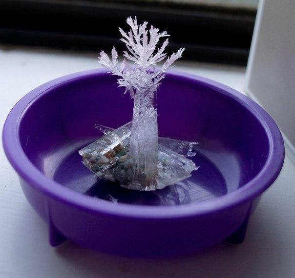 Как выращивать кристаллы в домашних условиях быстро