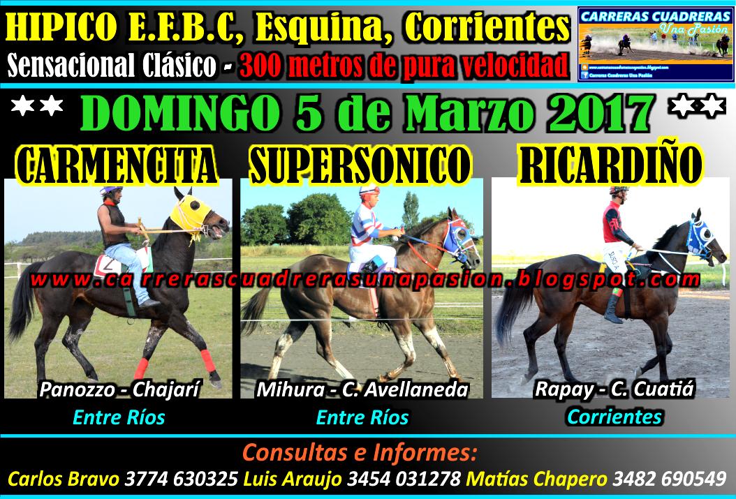 ESQUINA - CLASICO 300