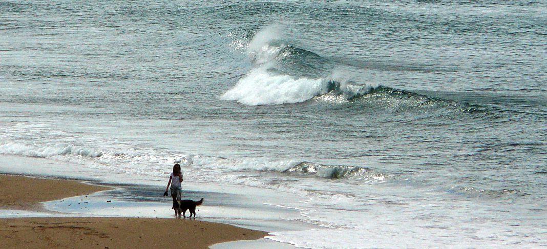 chica paseando perro sopela