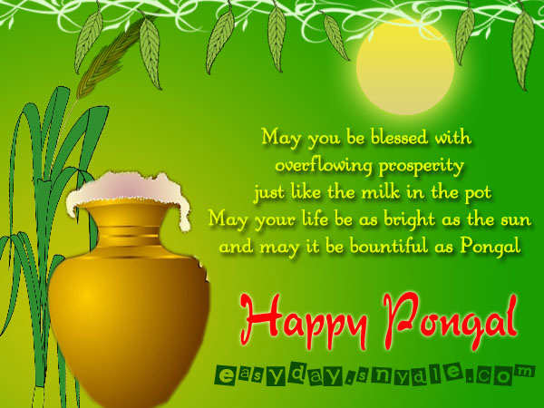 Happy Pongal wallpaper for whats app