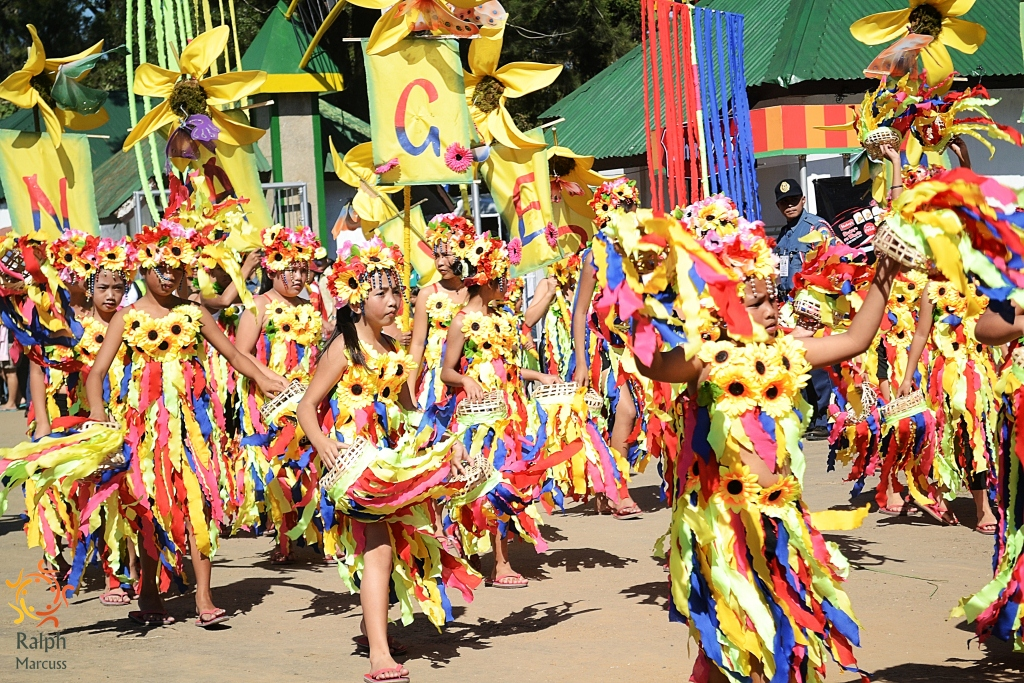 reaction on sinulog festival As one of the grandest festivals in the philippines, cebu's sinulog festival is an absolute must-do and must-see come and read my experience here.
