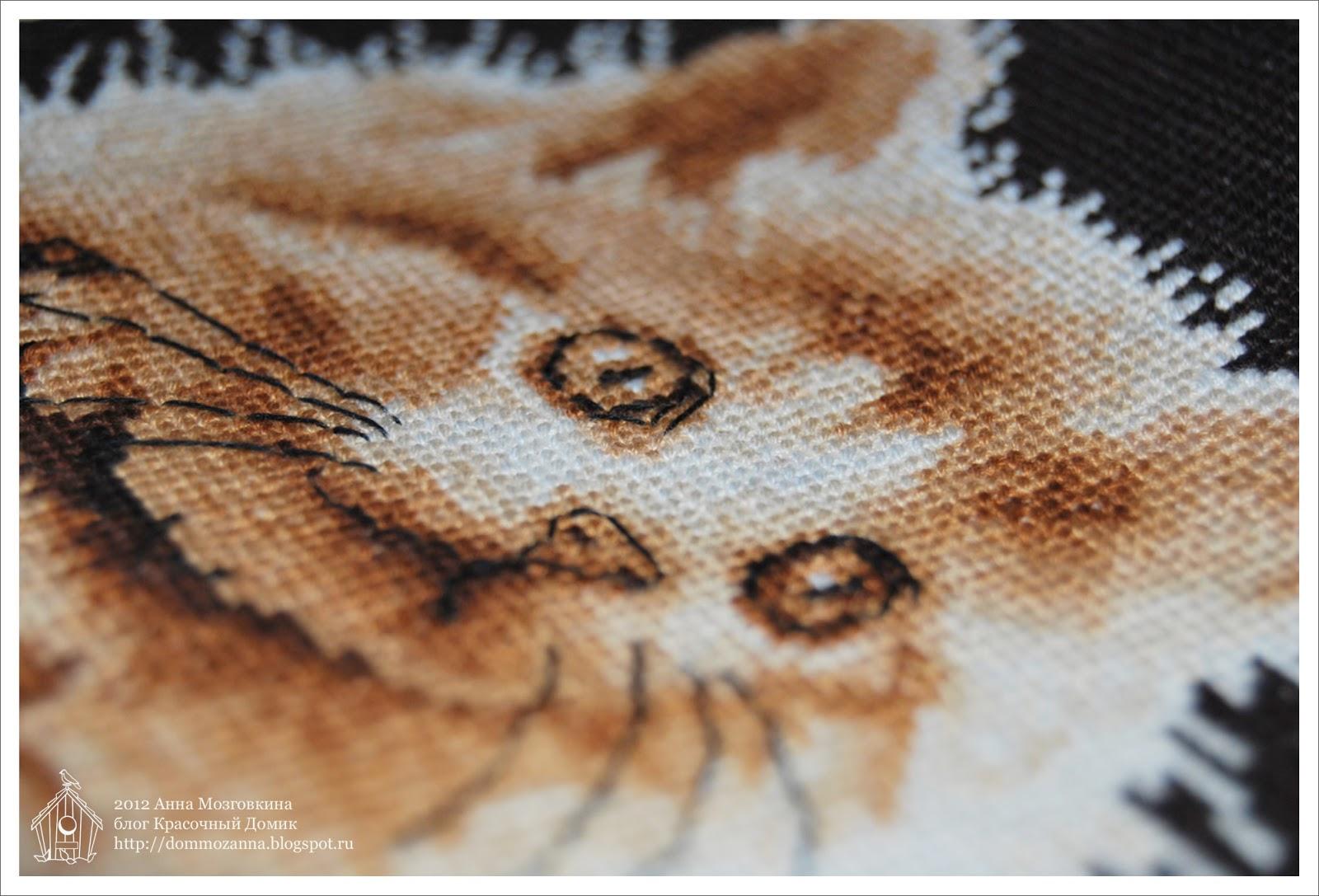 DMC котята вышивка крестом