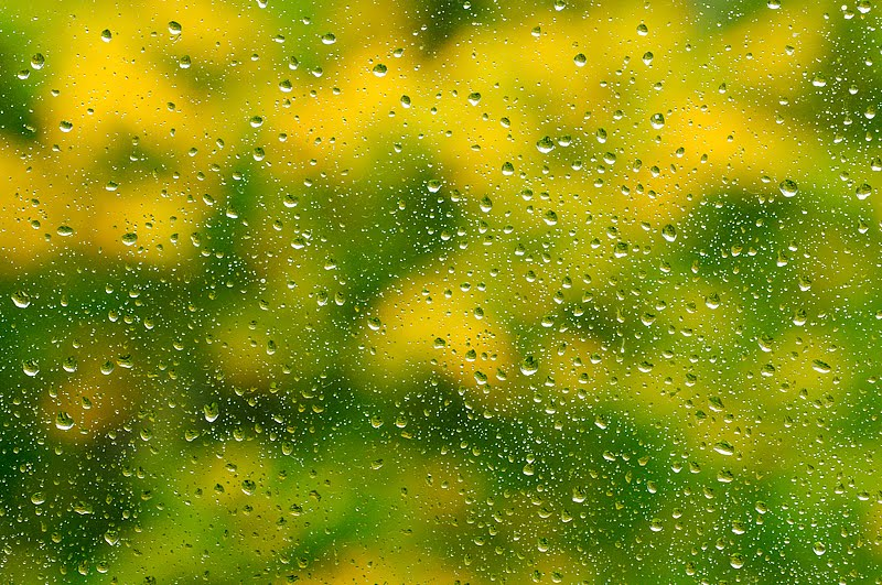 Sügise värvid ja veepiisad aknaklaasil, Fall colors and water drops on window