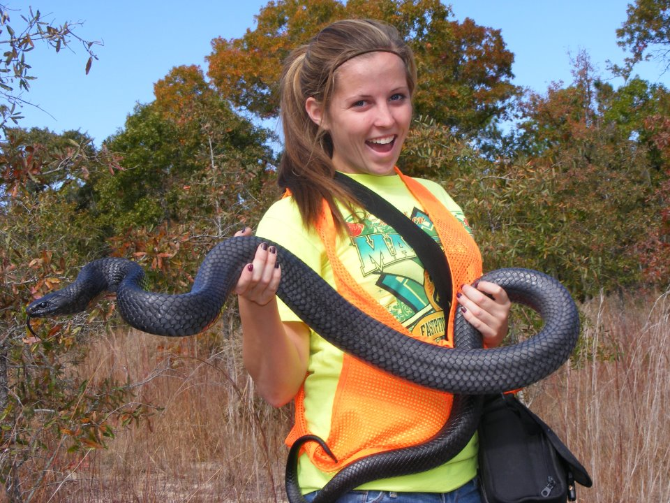 Life Is Short But Snakes Are Long Recent Conservation
