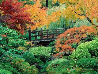 Японское садовое искусство развивалось на протяжении более чем тысячи лет, а оторванность страны...