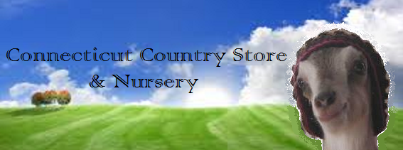 Come visit us at the Connecticut Country Store!