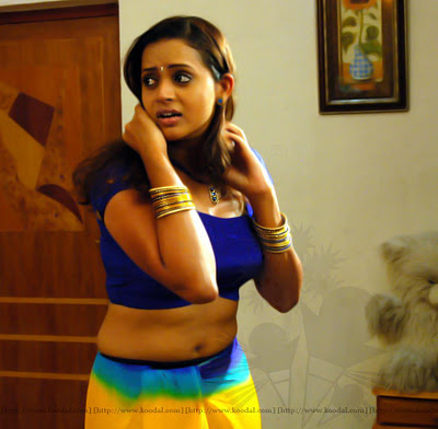 bhavana latest hot navel and cleavage show in saree photos