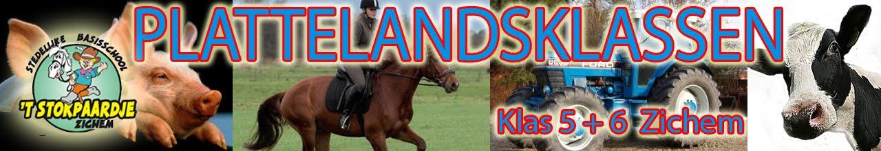Plattelandsklassen 't Stokpaardje 2016