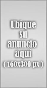 Banner Der 160X300
