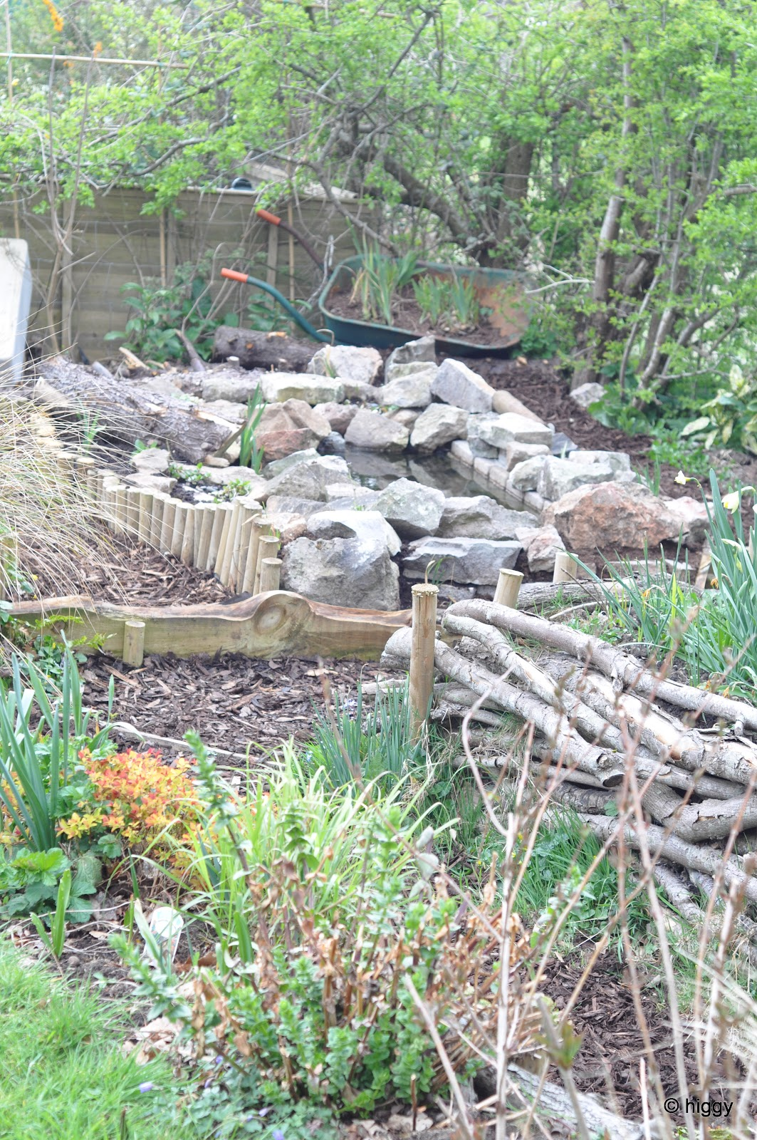 Higgy 39 s garden project as seen on bbc springwatch for How much does it cost to build a fishing pond