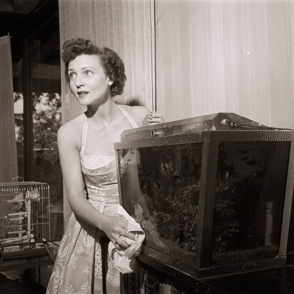 35 rare and fabulous vintage photos of betty white. Black Bedroom Furniture Sets. Home Design Ideas