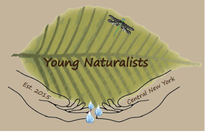 Central New York Naturalists