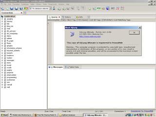 SQLyog Ultimate v10.00 Incl Key