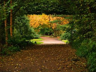 Edinburgo: Botanic Garden