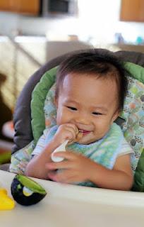 Alpukat: Makanan Sehat untuk Bayi