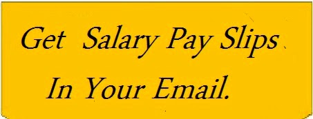 Salary Pay Slips