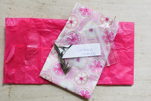 Snail mail from We ♥ Mail