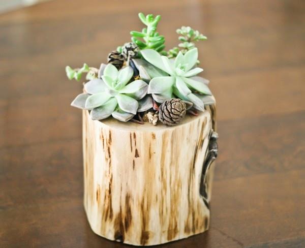 Tree Trunk Flower Pot Design Creative Decorating Ideas