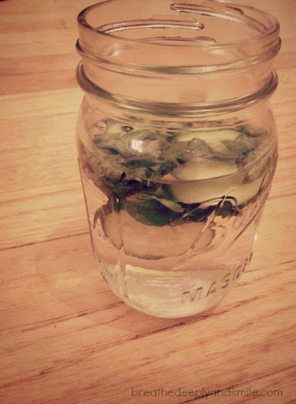 cucumber-mint-water-1