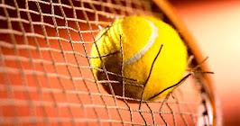 SEGUI I RISULTATI IN TEMPO REALE DEI TORNEI ATP , WTA , COPPA DAVIS E FED CUP