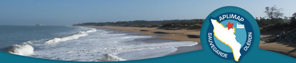 """APLIMAP """"pour un littoral oléronais préservé et une ostréiculture naturelle"""""""