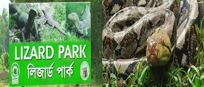 Images of Bangabandhu Safari Park