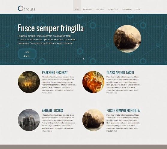 Circles WordPress Theme for Business