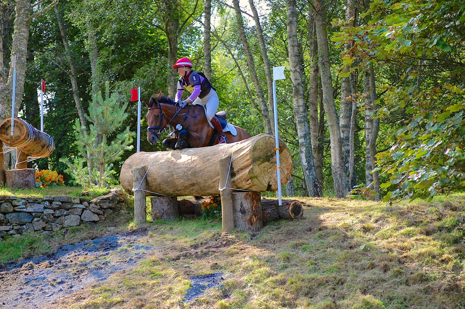 Blair Castle International Horse Trials; horse crash 3