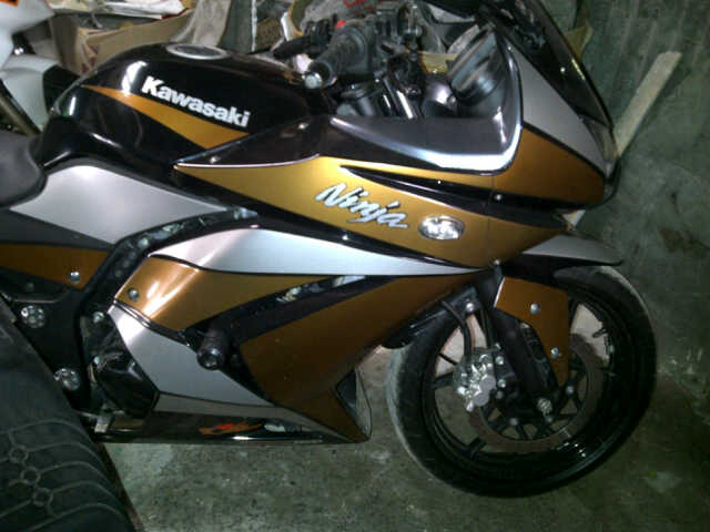 Ninja 250R airbrush list gold & white title=