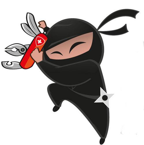 Profissional Ninja