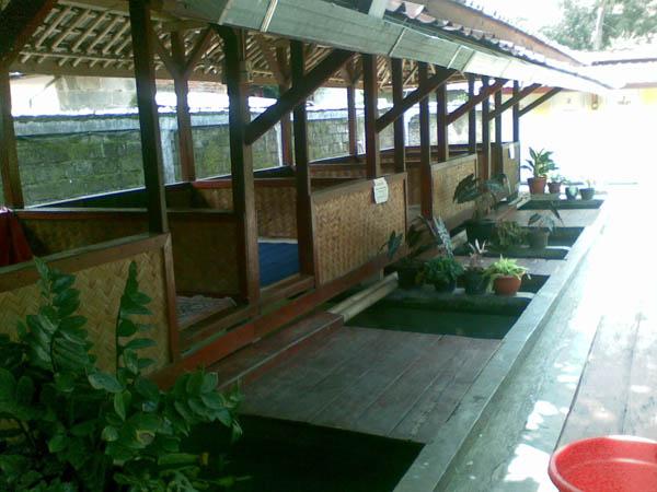 saung diatas kolam ikan buat jualan sate kambing jual