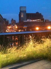 High Line Park at Dusk