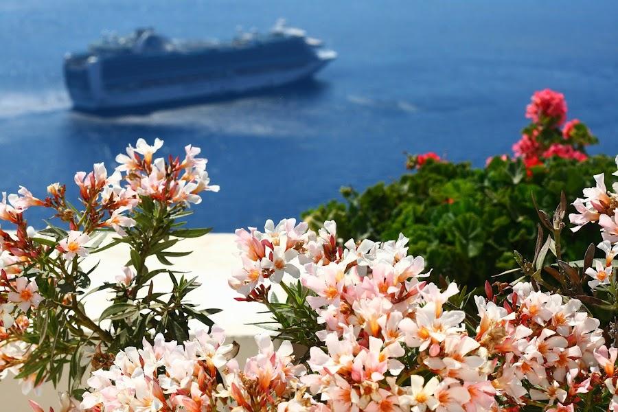 Firostefani and Fira, Santorini