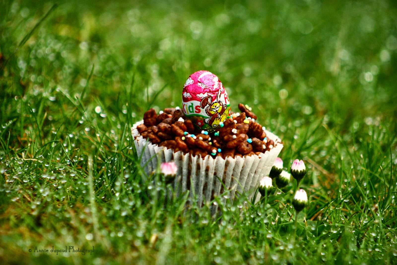 a rice krispie cake in the grass