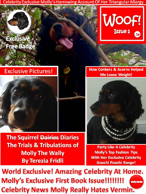 The Squirrel Diaries The Trials & Tribulations of Molly The Wally.