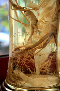 Panax ginseng consists of Ginsenosides that different.