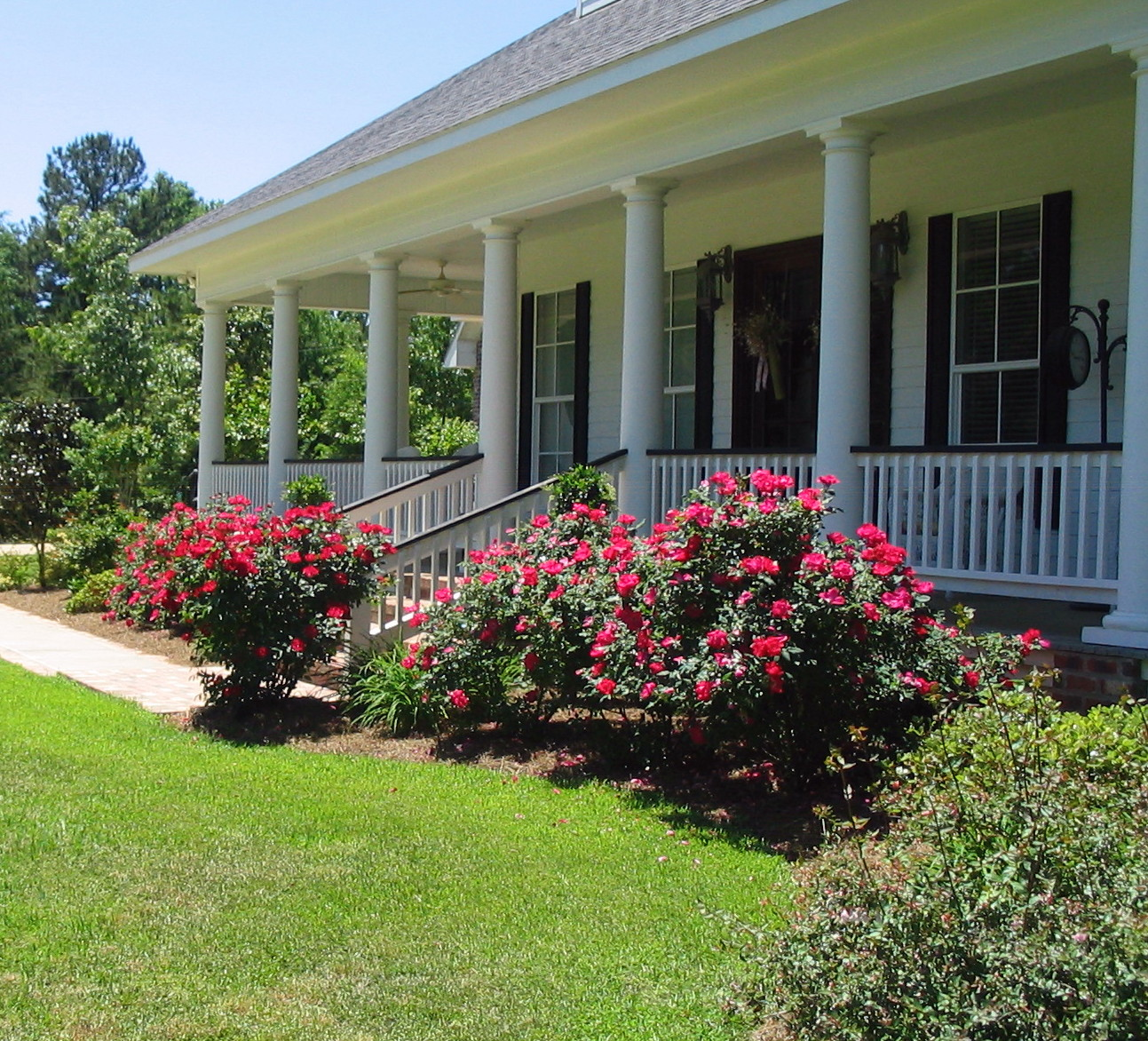 Front Yard Landscaping Roses : Tablescape on the porch serving cajun style red beans and rice