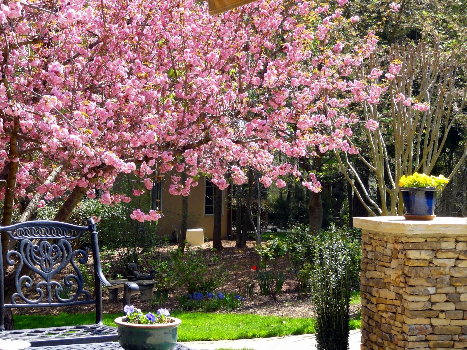 happy home strolling through the spring garden