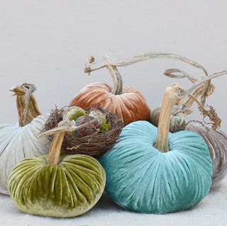 Love Feast Velvet Plush Pumpkins Lime Teal Autumn Color Palette