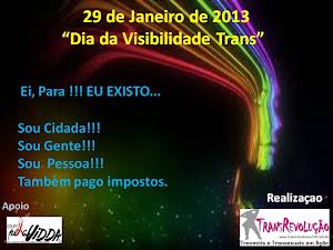 VISIBILIDADE TRANS 29 DE JANEIRO DE 2013