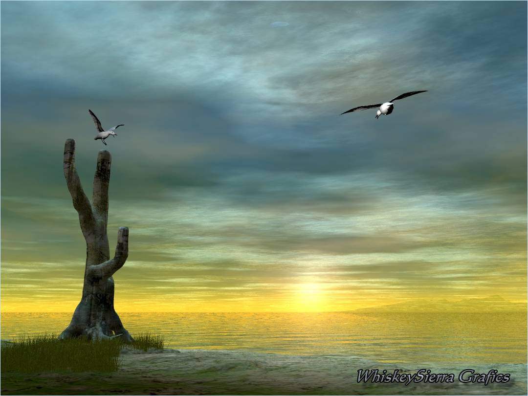 The Mindful Perceptron: EMPTINESS