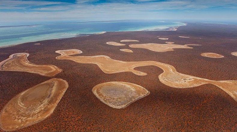Los lagos de yeso o las birridas de Shark Bay