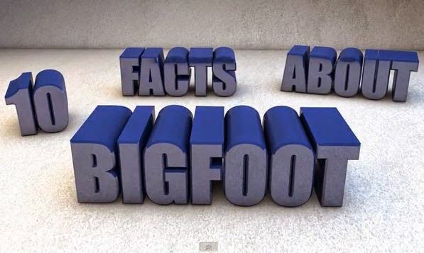 Bigfoot Facts