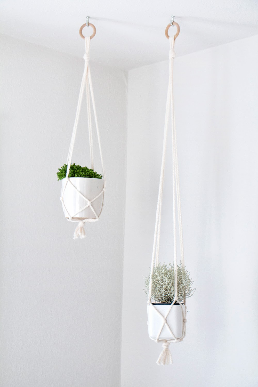 These simple hanging pot plant holders are