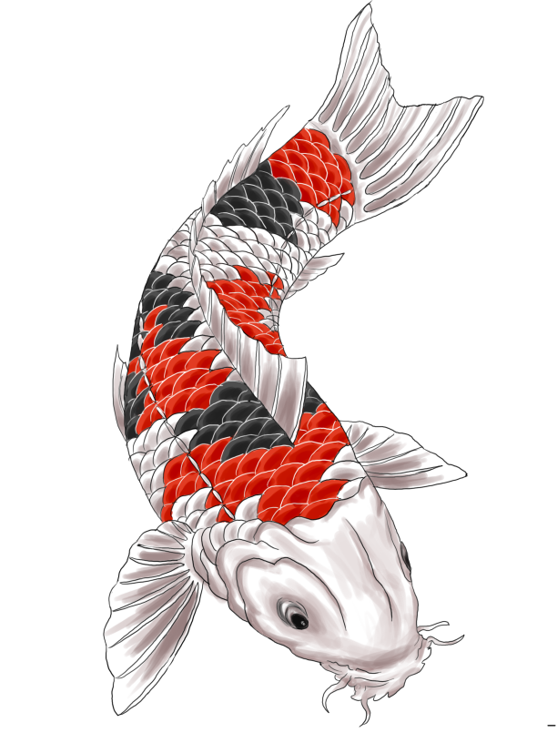 koi fish tattoo designs choosing superb japanese or chinese tattoo design koi fish tattoos. Black Bedroom Furniture Sets. Home Design Ideas