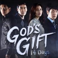 God's Gift – 14 Days - 신의 선물 - 14일 - Shineui Sunmool - 14 Il