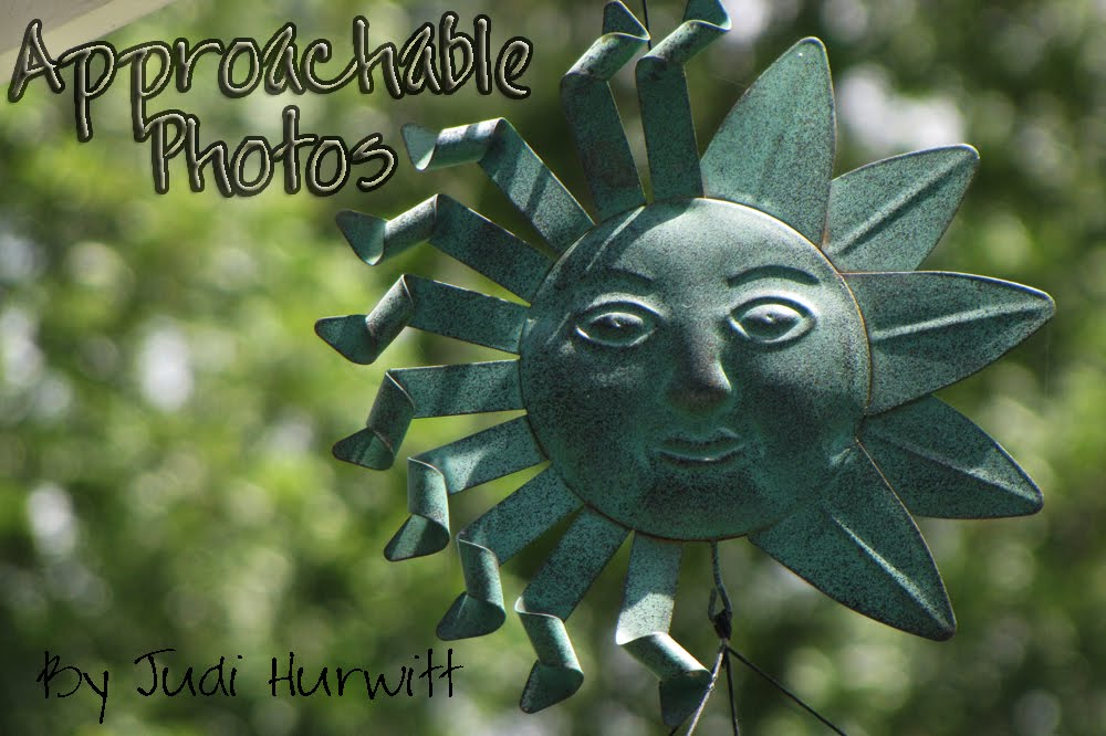 Approachable Art's Photos